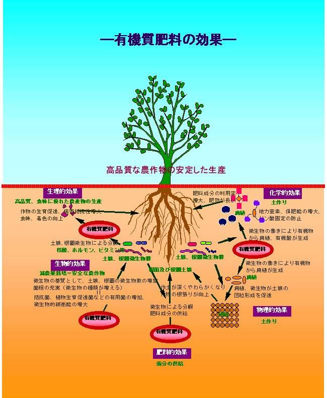 大日本産肥株式会社/北九州門司...